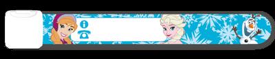 Disneys Frost